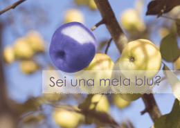 mela_blu